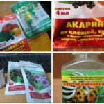 Biologicals tegen coloradokevers