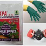 Voorzorgsmaatregelen bij het werken met giftige chemicaliën