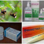 Insectenbeetbehandeling