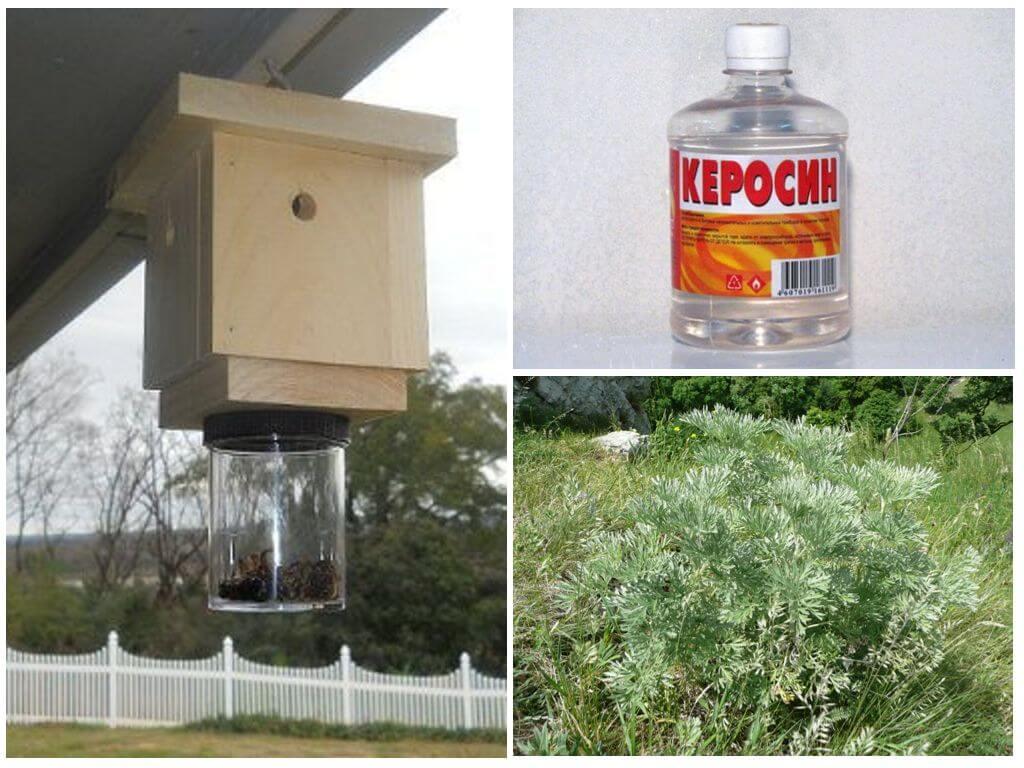 Methoden voor het omgaan met wilde bijen