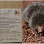 Alphos-Mole-tabletten