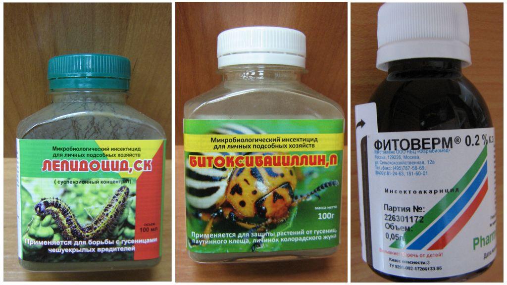 Biologische preparaten tegen zijderupsen
