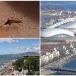 Muggen in het Krasnodar-gebied