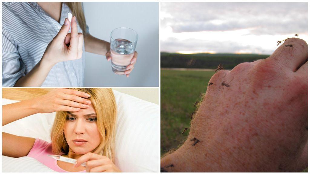 Geneeskunde op een temperatuur van muggenbeten