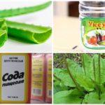 Traditionele geneeskunde voor de behandeling van muggenbeten