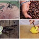 Insectenafstotende methoden
