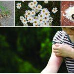 Muggenspray voor kinderen