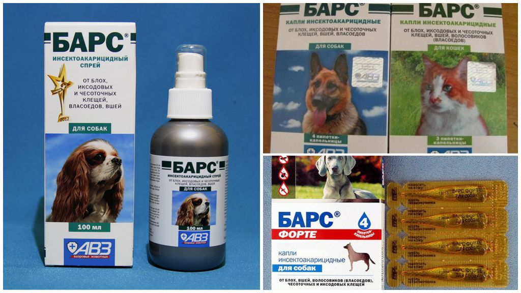 Betekent Bars van teken voor huisdieren