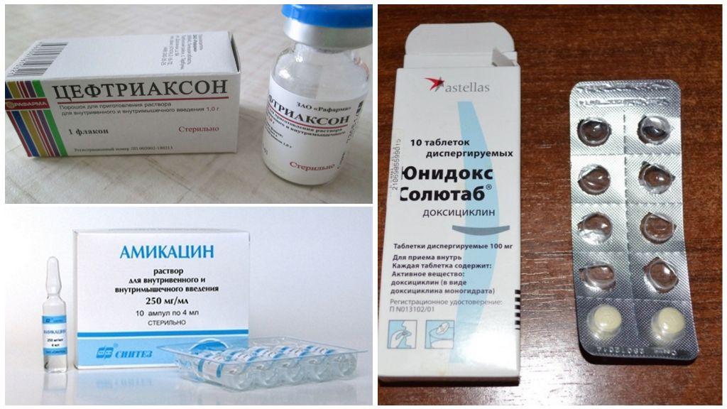 Doxycycline-analogen