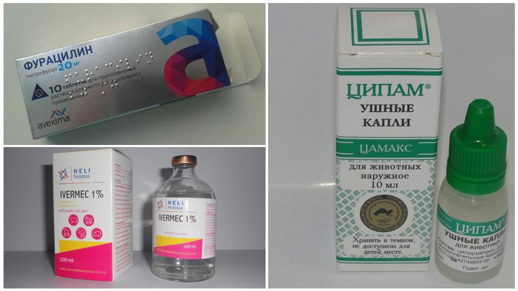 Geneesmiddelen voor de behandeling van teken