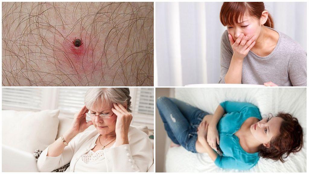 Eerste tekenen van door teken overgedragen ziekten