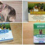 Preparaten voor het behandelen van honden van vliegen