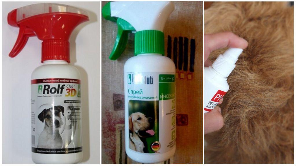 Sprays voor honden tegen teken