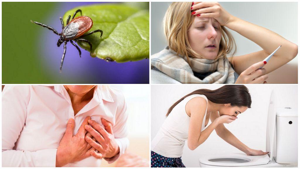 Symptomen van tekenencefalitis bij volwassenen