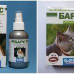 Kraag en spuit Luipaard tegen teken voor katten