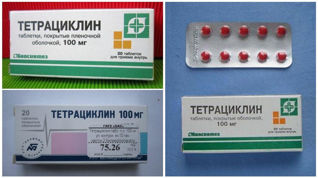 Tetracycline bij tekenbeet