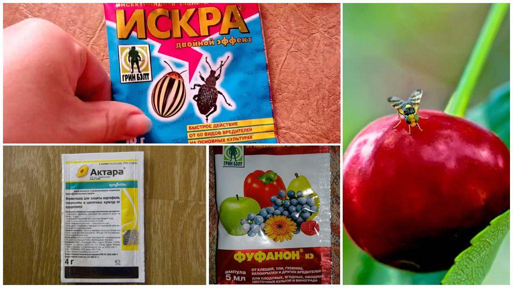 Cherry Flies Chemicals