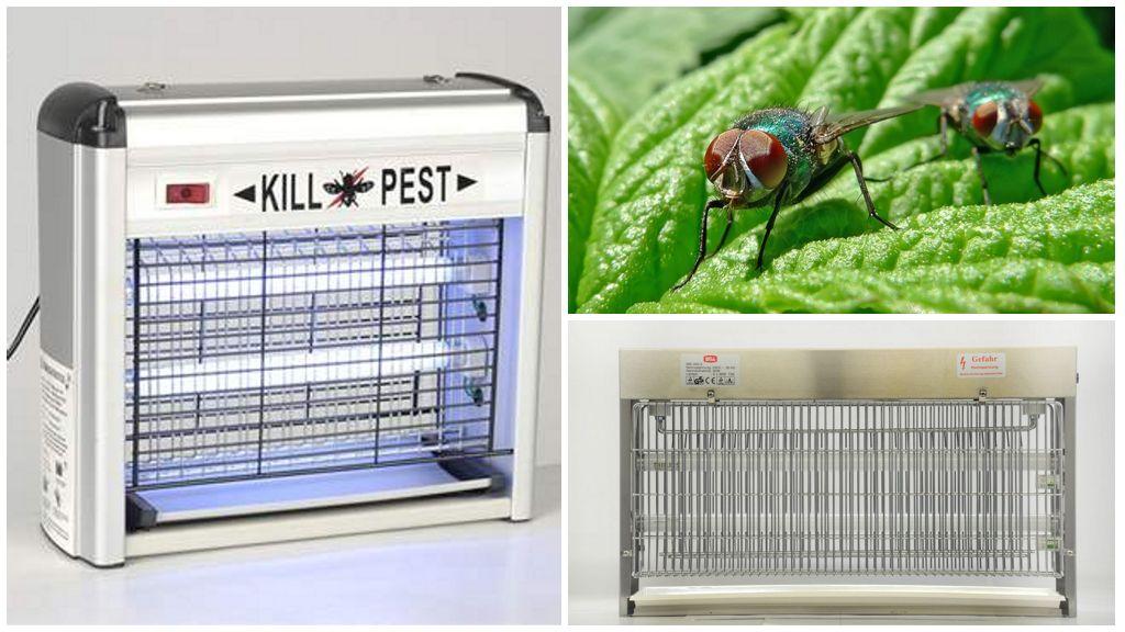 Elektrische insectenverdelgers