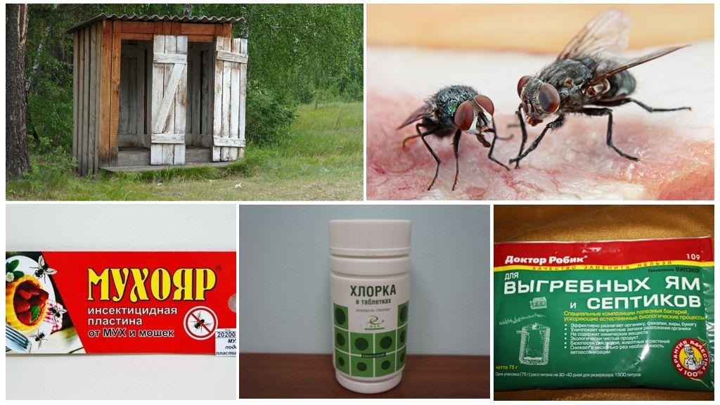 Remedies voor vliegen in het toilet