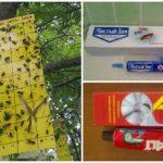 Lijgbak voor insecten