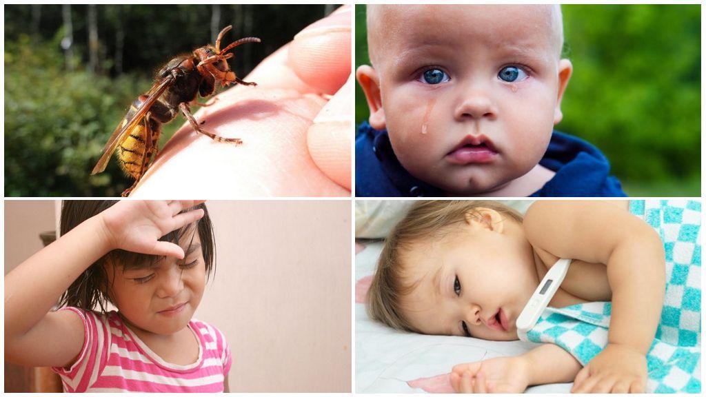Systemische allergieën na een wespensteek