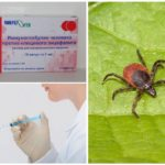 Tick-borne encefalitis immunoglobuline
