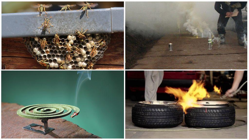 Wasp-controlemethoden