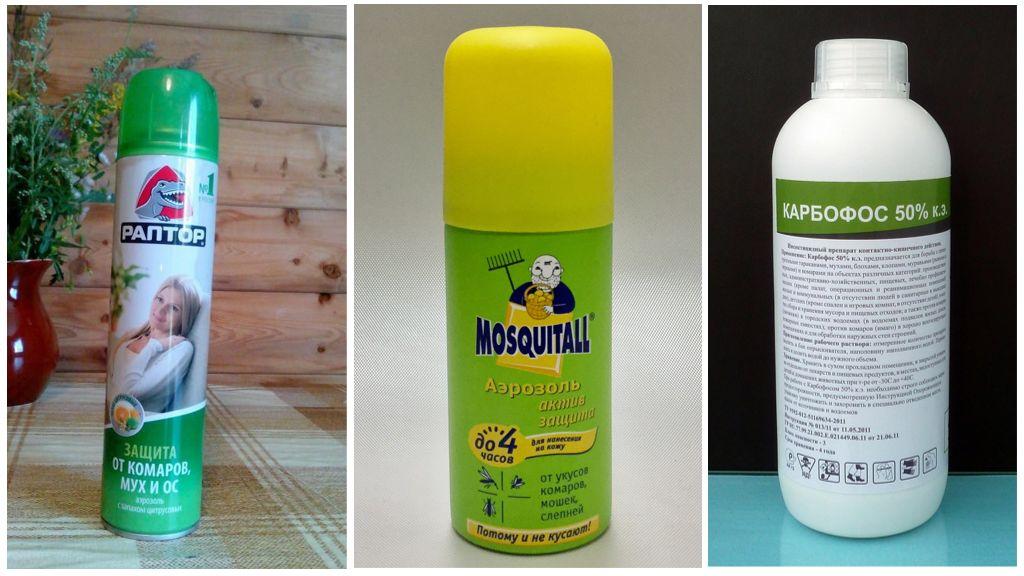 Insecticiden van bijen en wespen