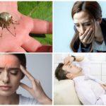 Allergisch om spinnenbeet te bijten