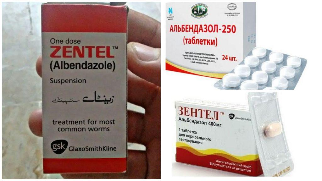 Benzimidazolen tegen Giardia