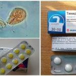 Preparaten voor de behandeling van Giardia