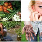 Oorzaken van parasitaire infectie