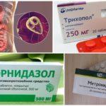 Nitroimidazol Anti-Giardia Remedies
